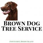 Brown Dog Tree Service Logo