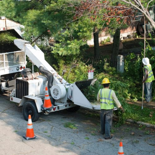Picture of our crew removing brush and using a chipper to remove the debris in Pawtucket, RI